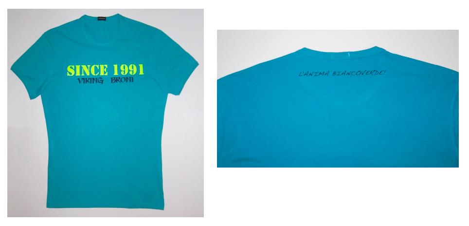 T-Shirt Azzurra 2013